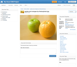 Cloud CMS View Project Document